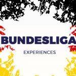 BUNDESLIGA-ex
